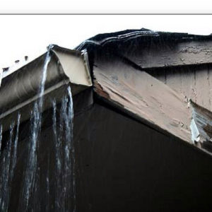 Neglected gutter cleaning will lead to expensive roof repairs and overall damage to the structure of your home.