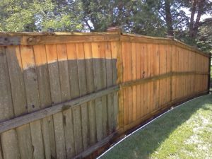 Comparison of pressure washed wooden fence versus unwashed fence.
